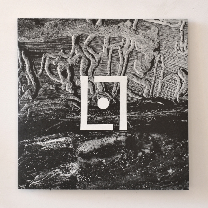 design for LunarLodge LP